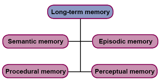 Scheme: Long-term memory can be divided into Semantic memory, Episodic memory, Procedural memory and Perceptual memory.